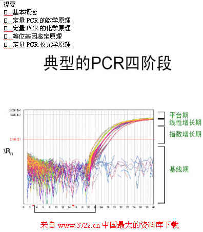 《实时定量pcr技术原理(pdf 58)》
