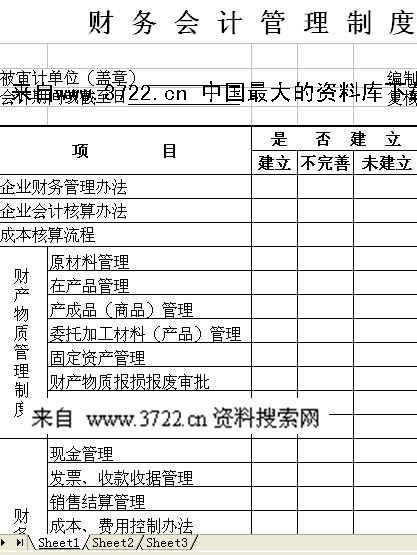 限公司内审模版-财务会计