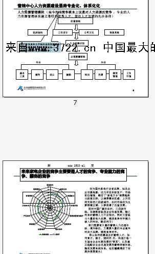2011年上海双鹿电器营销团队打造作业说明-打造高绩效销售团队(PDF
