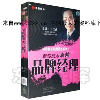 职业经理视频-王汉武《精准制导品牌运作系列:帮你成为卓越品牌经理》视频
